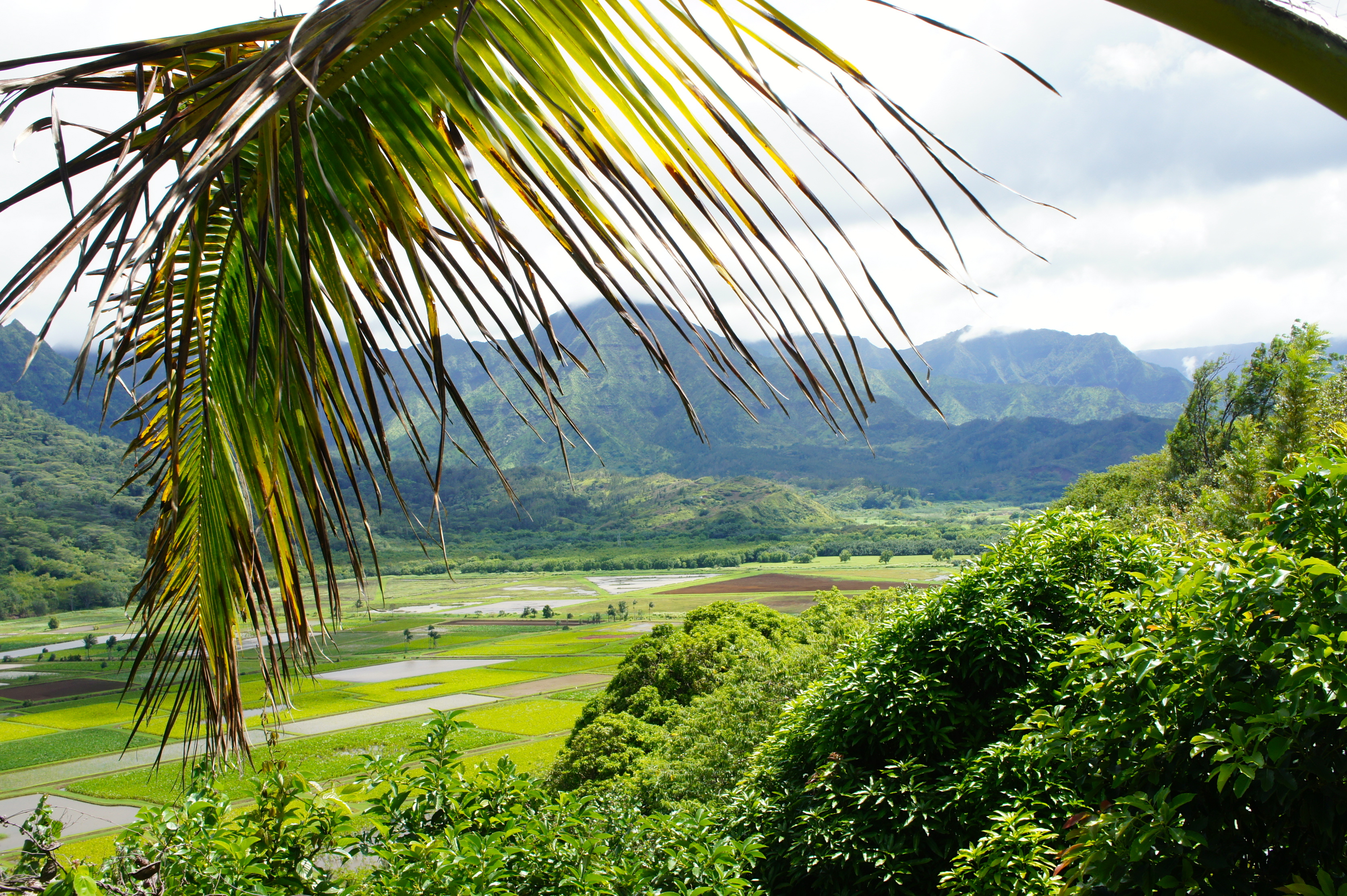 Hanalie Valley – Kauai