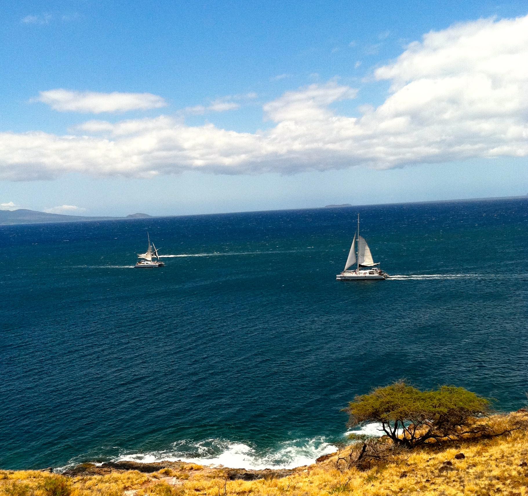 Maui Boats